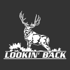Lookin Back Mule Deer Window Decal