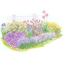 beginner garden for full sun better