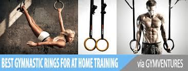 10 best gymnastic rings plastic steel