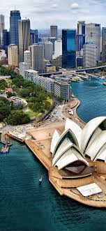 sydney harbour australia buildings bird