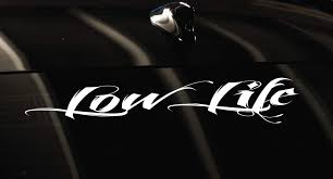 Amazon Com Luke Duke Decals Low Life Banner 20 Car Decal Sticker Home Kitchen