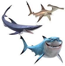 Finding Nemo Shark Decal Set Truck Car Window Wall Vinyl Etsy