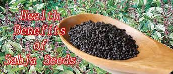 sabja seeds benefits and side effects
