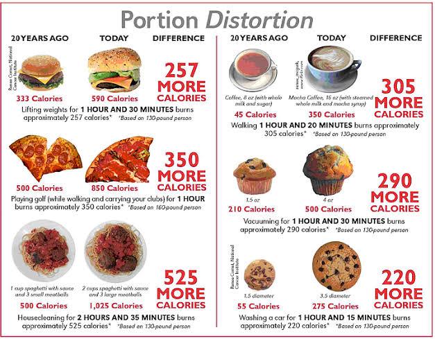 """Resultado de imagem para portion size along time"""""""
