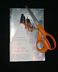 The Time it Takes to Fall by Margaret Lazarus Dean | Flickr