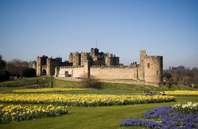 """Resultado de imagem para Castelo de Alnwick, Northumberland, Inglaterra"""""""
