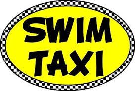 Amazon Com Gorunusa Swim Taxi Oval Decal Automotive