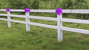If You See Purple Paint In The Woods You Need To Leave