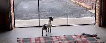 Dog Pet Barrier Fence Dunia Belajar