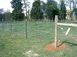Studded T Posts Light To Heavy Duty Farm Agriculture Fence
