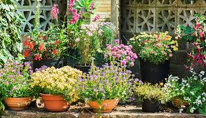 the best planters for your garden