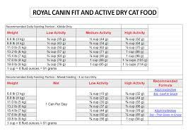 royal canin fit 32 4 kg cat food