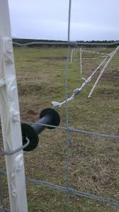 5 Common Problems With Horse Electric Fencing And How To Solve Them
