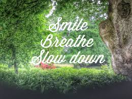 Slow down and breathe as if your life depends on it