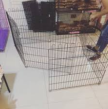 8 Panel Pet Fence Available At Any Puffy Paws Heaven Facebook