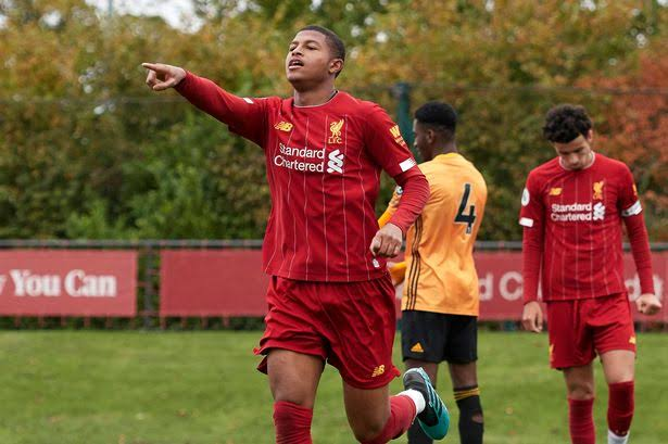Image result for rhian brewster""