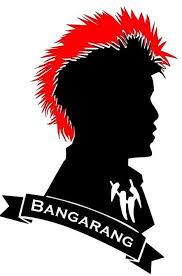 Peter Pan Hook S Rufio Vinyl Decal W Red Mohawk And Bangarang Banner Ftw Custom Vinyl
