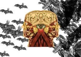 Znalezione obrazy dla zapytania: zlo wokol nas zdjecia