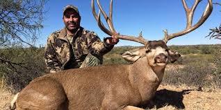 Mule Deer Quality Hunts