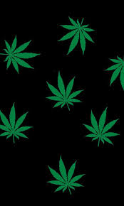 weed hd live wallpaper the best images