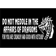 Wildside Auto Decals Dragon Decal Funny Car Window Vinyl Do Not Meddle Sticker