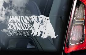 Miniature Schnauzers On Board Car Window Sticker White Etsy