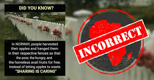 No Hanging Apples On Fences For Poor And Hungry Not Nationwide Practice In Norway Africa Check
