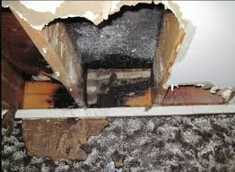 electrical in fireplace