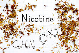 Chemical formula of Nicotine with spilled tobacco - Buy this stock ...
