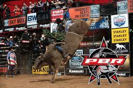 professional bull riders wallpaper 2019