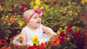 cutest adorable es wallpaper free