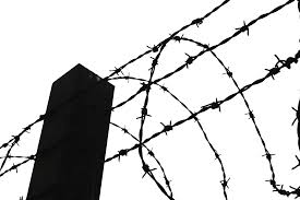 Barbed Wire Fence Drawing Clipart Barbed Wire Tradeindia Barb Wire Fence Clipart Transparent Cartoon Jing Fm