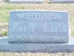 Addie Harrison (1870-1940) - Find A Grave Memorial