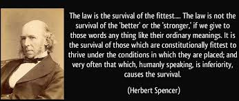 hukum rimba hukum penguasa