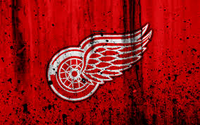 detroit red wings grunge nhl hockey