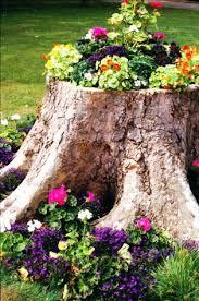 i ve got some tree stumps in my garden