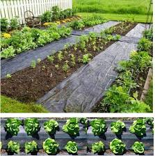 china woven plastic weed mat garden