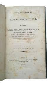 Jacobo Eduardo Smith - Compendium Florae Britannicae - 1816 - Catawiki
