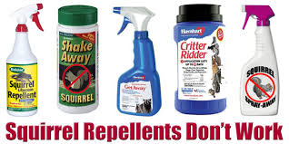 squirrel repellent does it work