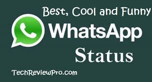 50 best whatsapp status updates