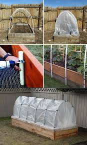 top 10 cold frame tips for fall and