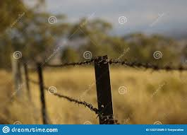 Stretch Of Rusty Barbed Wire Fence Stock Image Image Of Boundary Countryside 132212549