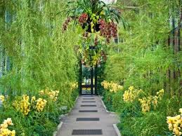 longwood gardens transforms its
