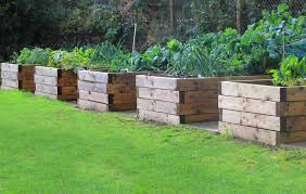 pro tips for raised bed gardening