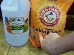 pet urine on tile and sealed floors