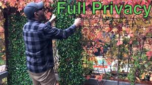 Get Year Round Privacy With Expandable Faux Ivy Privacy Fence Social Distancing Youtube