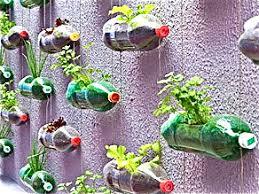Herb Gardens Desertification