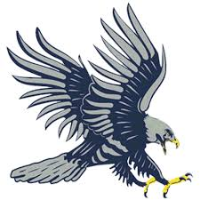 The Dickinson State Blue Hawks - ScoreStream