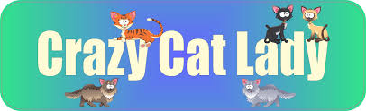 10in X 3in Crazy Cat Lady Vinyl Bumper Sticker Decal Window Sticky Stickers Decals Stickertalk