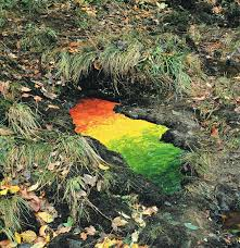 Magical Land Art By Andy Goldsworthy